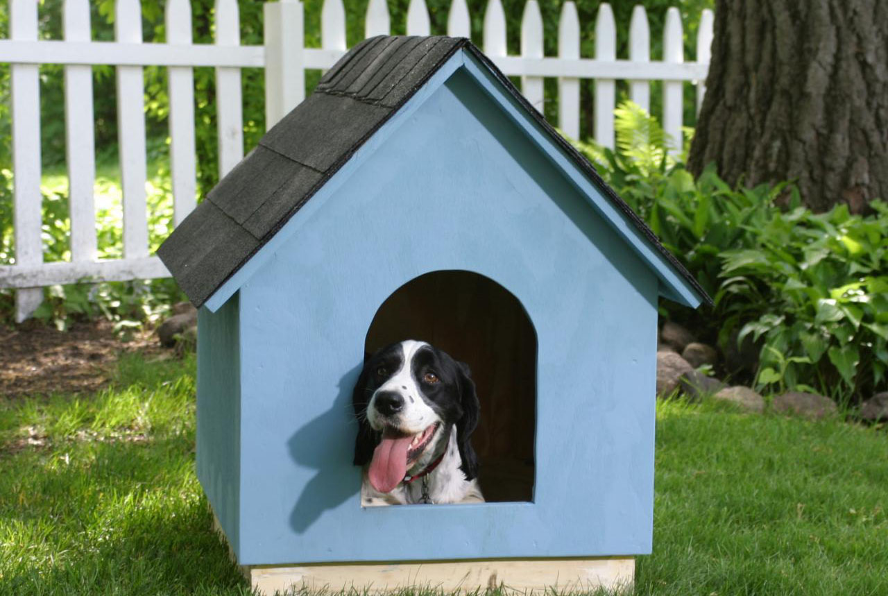The 7 Best Insulated Dog Housesin Winter
