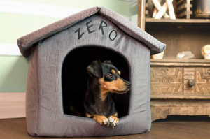 Disney Zero Portable Pet House Warm Dog Houses